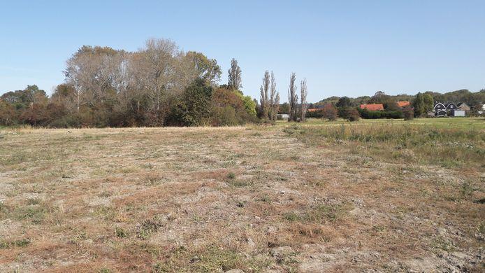 Het bestaande bosje tegen Tuinderij blijft en krijgt een functie als natuurlijk speelbos voor de wijk Claverveld.