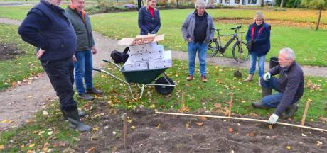 2500 Tulpenbollen voor Stadstuin Oldenzaal