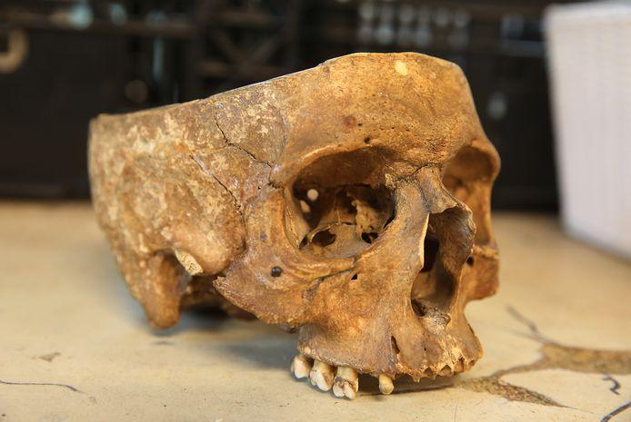 TwelloDS-2019-7532Gevonden menselijke schedel in sorteerruimtevan de kringloopwinkel.