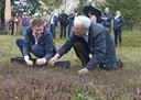 Hendrik Hoeksema (links) en Geert Versteijlen, zij aan zij cranberries plukkend bij de opening van Landerij Van Tosse, zijn nu allebei opgestapt als Maashorstbestuurder.