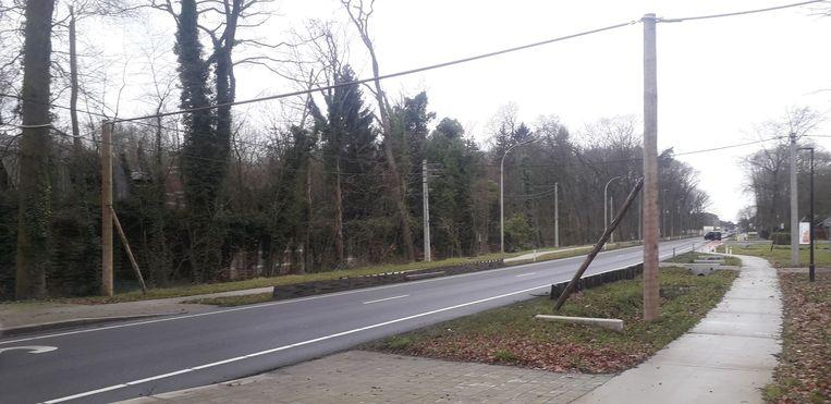 De houten constructies van de eekhoornbruggen werden sinds kort aan de uiteinden verbonden met de bomen aan de zijkant van de drukke N13.