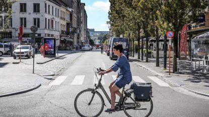 Zijn autoluwe stadsboulevards de toekomst?