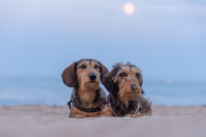 Heerlijk uitwaaien op het Spaanse strand