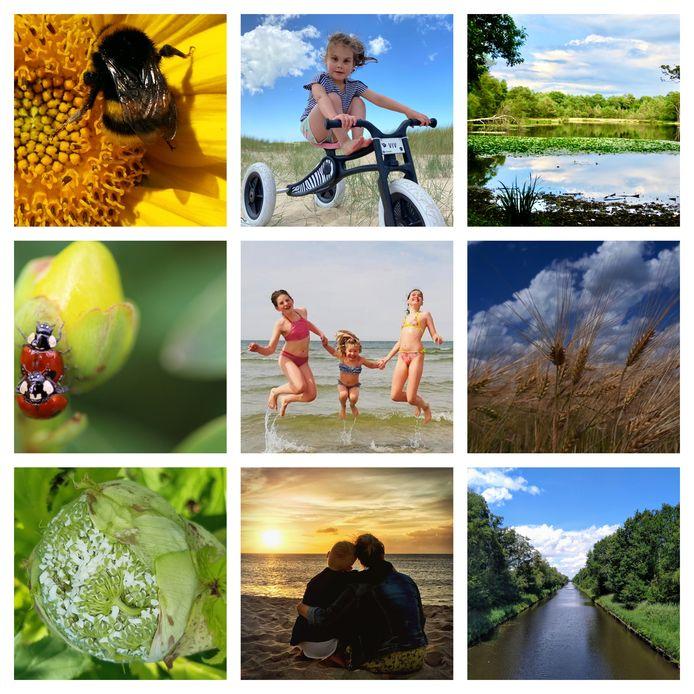 Een selectie van zomerse foto's die ingezonden zijn voor ED Zomerfoto 2020.