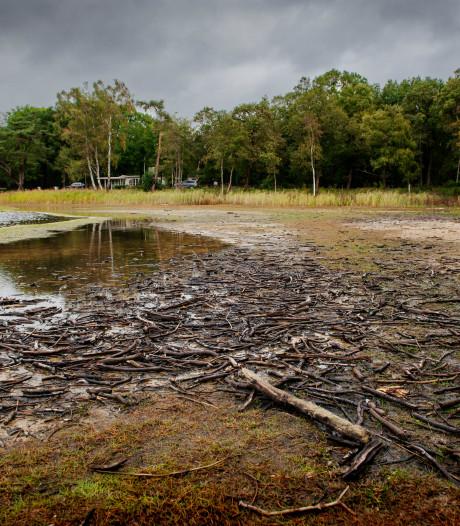 Waterpeil IJzeren Man Vught nog nooit zo laag geweest: 'Kunnen we straks nog wel zwemmen'