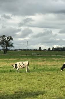 Nauwelijks luchtvervuiling biomassacentrales Waddinxveen
