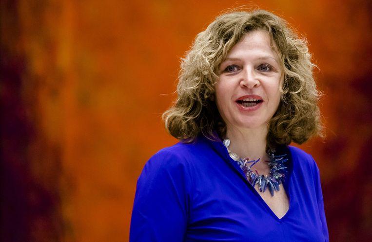 Edith Schippers, hier als informateur in 2017, tijdens het kamerdebat over het verloop van de formatie. Beeld ANP