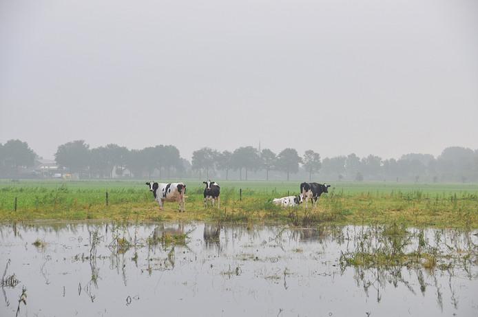 noodweer in zuidoost Brabant heeft weer veel akkers en weilanden onder water gezet op donderdagavond