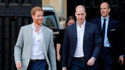 """Britten zwaar teleurgesteld in Harry en Meghan na verjaardag prins William: """"Schaam je, dat is je broer"""""""