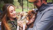Antwerpenaars zetten zich in voor Oost-Europese straathonden