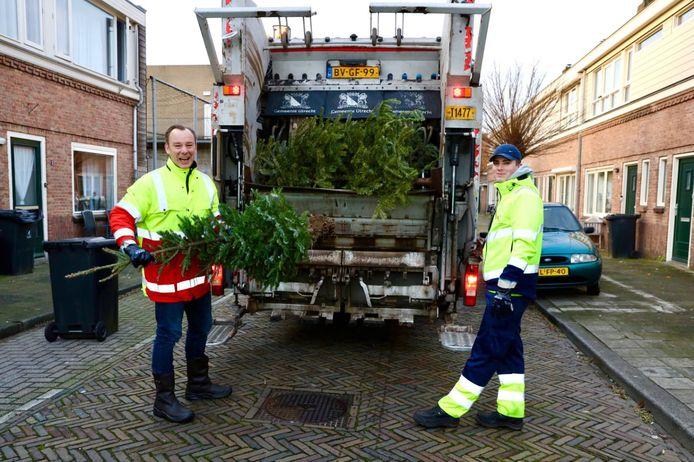 Wethouder Klaas Verschuure helpt een handje bij het ophalen van de kerstbomen in Utrecht.