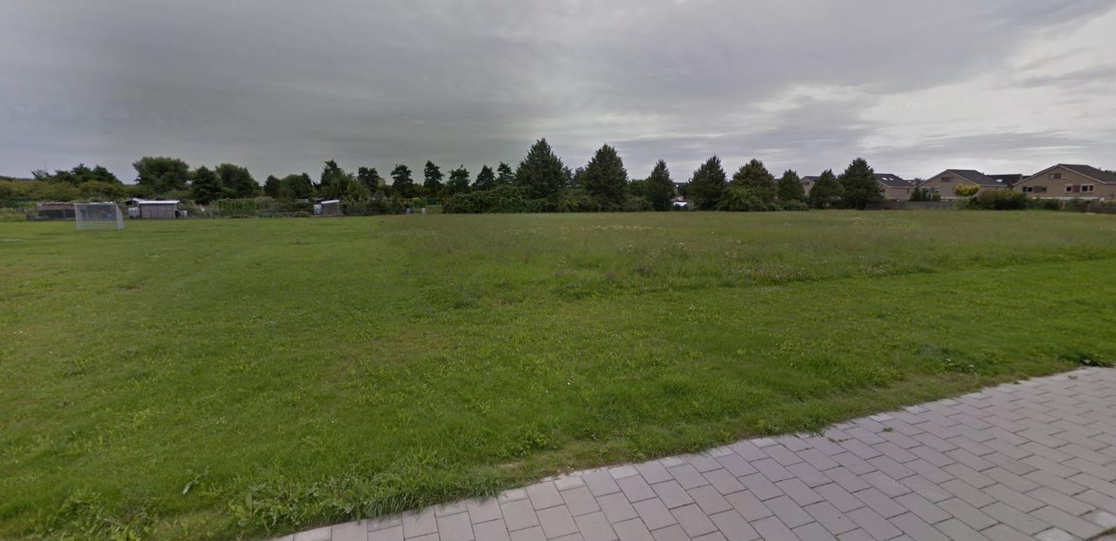 Het veldje aan de Ecu met op de achtergrond de volkstuinen
