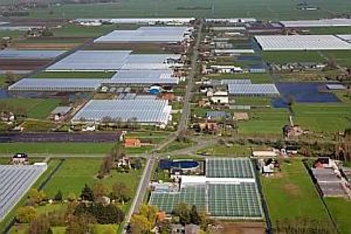 Het glastuinbouwgebied De Koekoek bij IJsselmuiden.