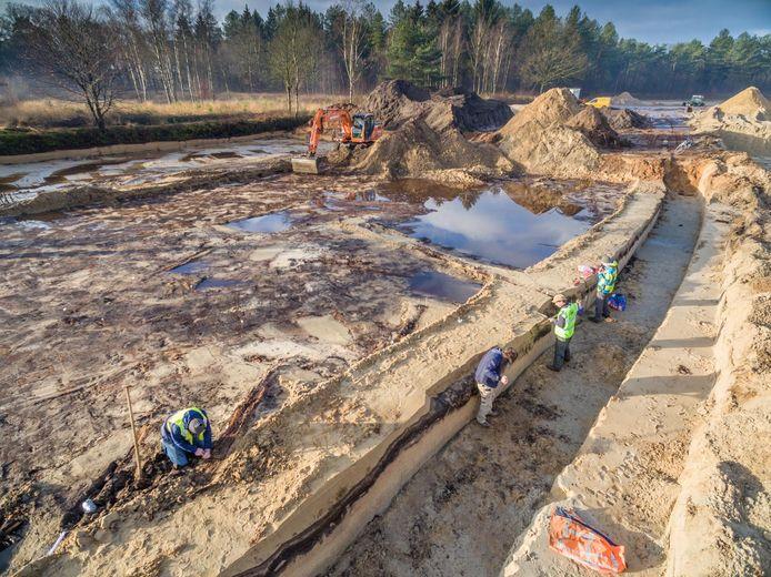 De werkzaamheden tijdens het opgraven van het 13.000 jaar oude dennenbos in Den Treek-Henschoten.