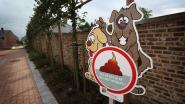 Hasselt bindt strijd aan met hondenpoep tijdens Week van de Handhaving
