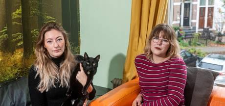 Arnhemse 'catnapper' is buurtkatten spuugzat en vangt ze: 'Ik heb gewaarschuwd dat ik ze naar een onbekende plek breng'