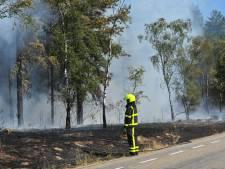 Natuurbrand tussen Maarheeze en Weert onder controle
