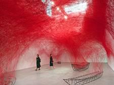 Japanse kunstenares toont spectaculair 'spinnenweb' in Noordbrabants Museum