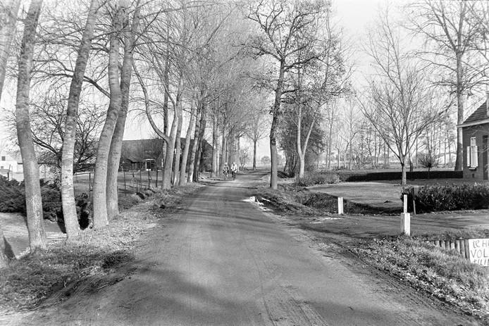 Een beeld van het boerengehucht Aanschot in de Eindhovense wijk Blixembosch in 1979. Hier zou de nieuw aan te leggen Castiliëlaan dwars doorheen gepland zijn. Dat ging uiteindelijk niet door.