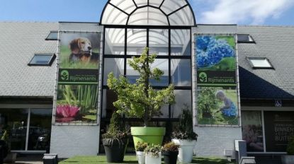 Tuincentrum Rijmenants krijgt 4 sterren op Garden Centre Quality Awards