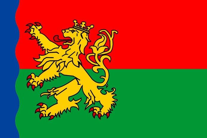Of ik zelf een betere ontwerper ben dan Magda Kleinhout laat ik graag over aan anderen. Wat ik wel weet is dat mijn benadering van een vlagontwerp totaal anders is. Ik gruwel zelf namelijk van vlaggen die te veel op een reclamedoek lijken. Dit is helaas wel het soort vlag dat de gemeenten en andere overheidsinstanties steeds meer gebruiken. Een vlag moet iets traditioneels hebben en niet teveel moderne logo's en al helemaal geen teksten. Een vlag hoort een symbool te zijn en geen reclame-uiting. Het ontwerp van Magda Kleinhout vind ik daarom niet mooi. Het is in mijn ogen typisch een creatie van een grafische ontwerper. Als geboren en getogen Achterhoeker én vlaggenliefhebber heb ik zelf het afgelopen jaar ook een aantal ontwerpen gemaakt. Voor mijzelf is het ontwerp dat ik jullie toezend het ontwerp dat mijzelf het meest aanspreekt en ook de beste uitleg heeft. Ik ben benieuwd wat anderen er van vinden. Christiaan Velthausz
