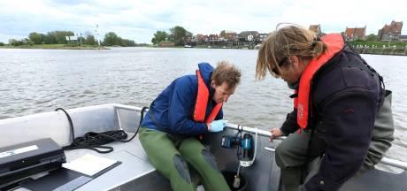 Op zoek naar dna van diersoorten in het water