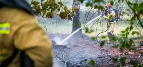 Brandweer heeft bosbrand in Nuenen snel onder controle, vuur mogelijk aangestoken