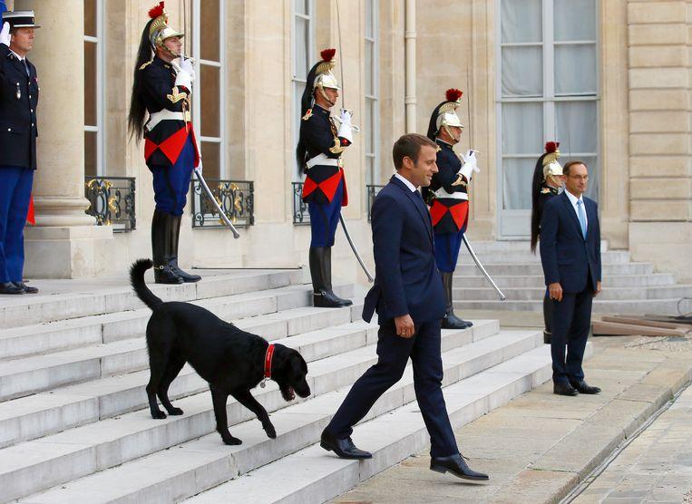 De Franse president Macron met zijn hond Nemo. Beeld AP