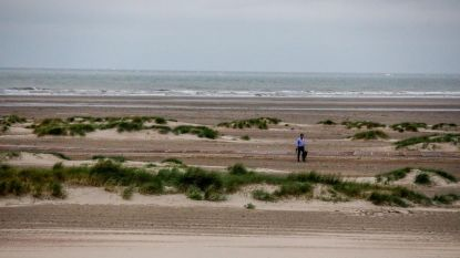 Duinen ontstaan spontaan in Zeebrugge