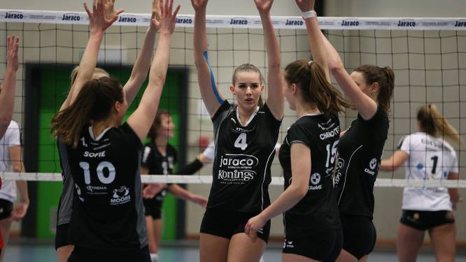 """Limburg Volley Ladies vraagt samen met vier andere clubs uit Liga A om de competitie voor een langere tijd stil te leggen: """"Bond wil doorzetten, maar dat is niet realistisch"""""""