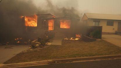 Bosbrand verwoest Australisch kuststadje