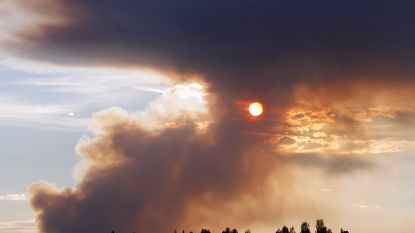 Tientallen bosbranden in Zweden raken maar niet geblust