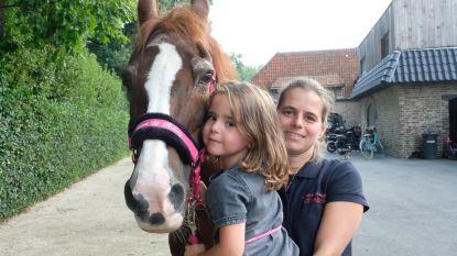Manege bezorgt paarden rustig pensioen