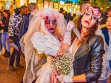 Het Zoetermeer Complot: Altijd al een thriller willen schrijven? Grijp je kans!