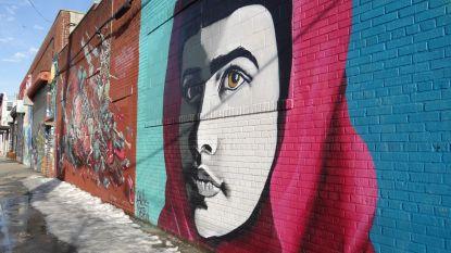 Graffitikunstenaars krijgen miljoenen na vernietiging kunst