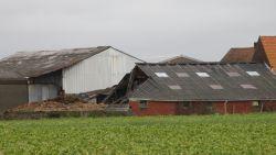 Dak koeienstal ingestort door storm