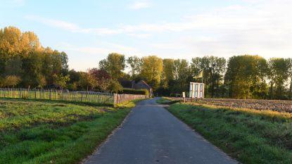 Komt er straks een fietsstraat in de Paddenbroekstraat?