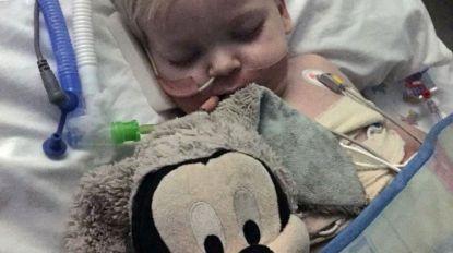 Ouders maken hartverscheurende beslissing beademing tweejarige Dylan te stoppen, maar dan volgt het mirakel