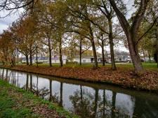 Slechts 25 woonwagens erbij, en niet op kamp Teersdijk: bewoners boos
