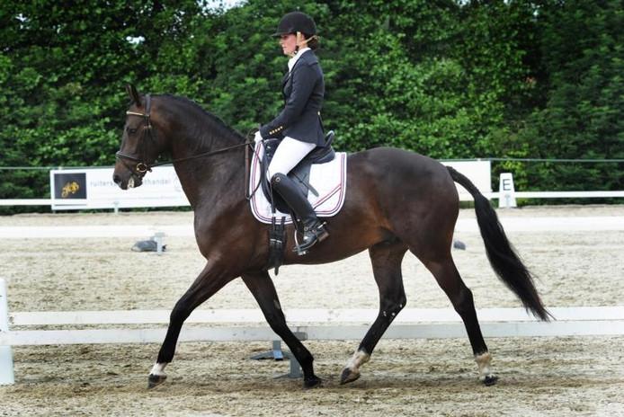 Milou Anthonisse in actie met haar paard Chef's Special. foto Lex de Meester