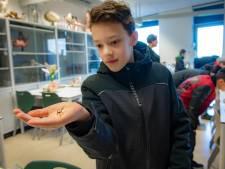 Olifantentandpasta en Zweedse lesmethoden moeten leerlingen naar de havo in Ubbergen trekken