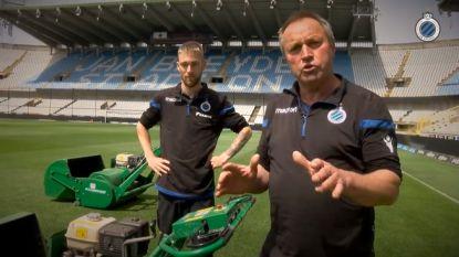 """Brugse greenkeepers hebben verzoek voor blauw-zwarte aanhang: """"Fans, denk ook eens aan ons"""""""