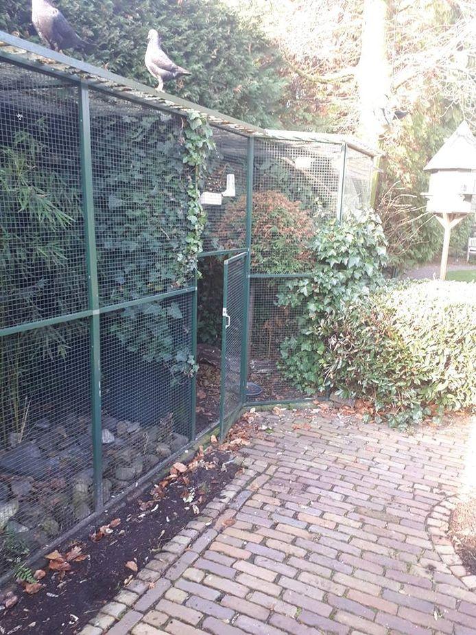 De volière in Best. De eigenaar kwam er zondagochtend achter dat zijn zeldzame vogels gestolen zijn.