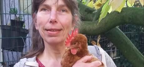 Strijd om inmiddels dode kip Jip gaat bijna vier jaar later door in hoger beroep