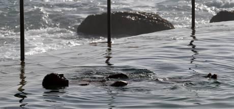 Dode vissen en kokend fruit: Australië zucht onder hittegolf