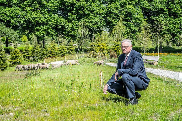 Ook Rotterdam heeft nu een natuurlijke begraafplaats: op Hofwijk. Schaapjes houden er het groen kort. Bedrijfsleider Wim Kerkhof is maar wat trots: ,,Het is prachtig geworden.''