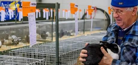 Passie voor iedere week konijnenhokken schoonmaken in Eindhoven