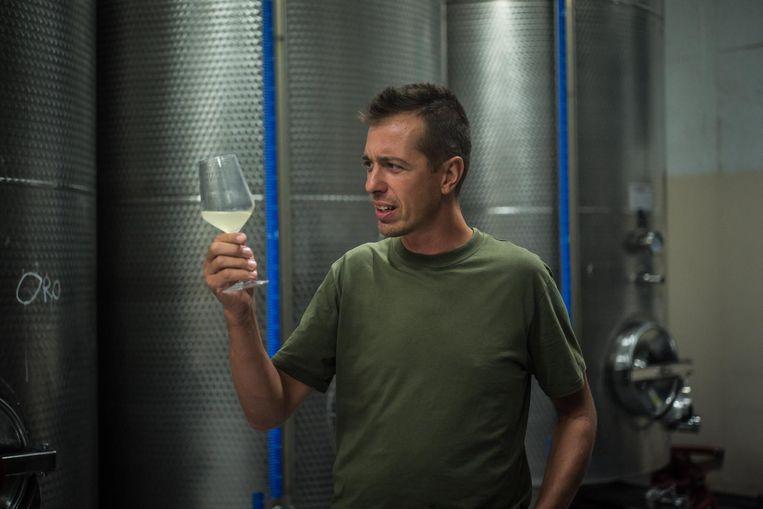 Luca Ferraro proeft een glas van zijn eigen prosecco Beeld Nicola Zolin