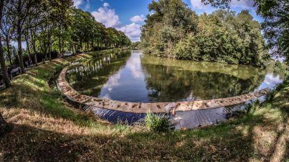 """Ieper zuivert water met plantenmatten: """"We maken de oevers mooier en verhogen de biodiversiteit in het water"""""""