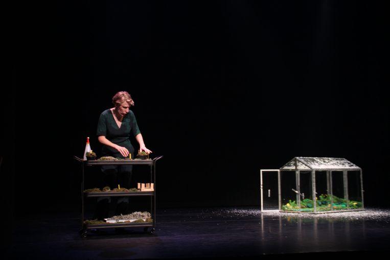 Paulien Cornelisse geeft uitleg over mos, dat haar een weldadige rust brengt. Beeld mam van dam
